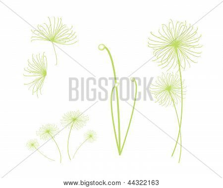 Ecological Concept An Illustration Collection of Landscaping Tree Symbols or Isometric Egyptian Cyperus Papyrus or Cyperaceae Plant. stock photo