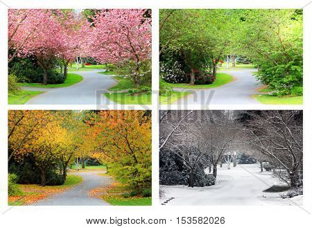 Spring, Summer, Fall and Winter. Four seasons photographed on the same street from the exact same lo