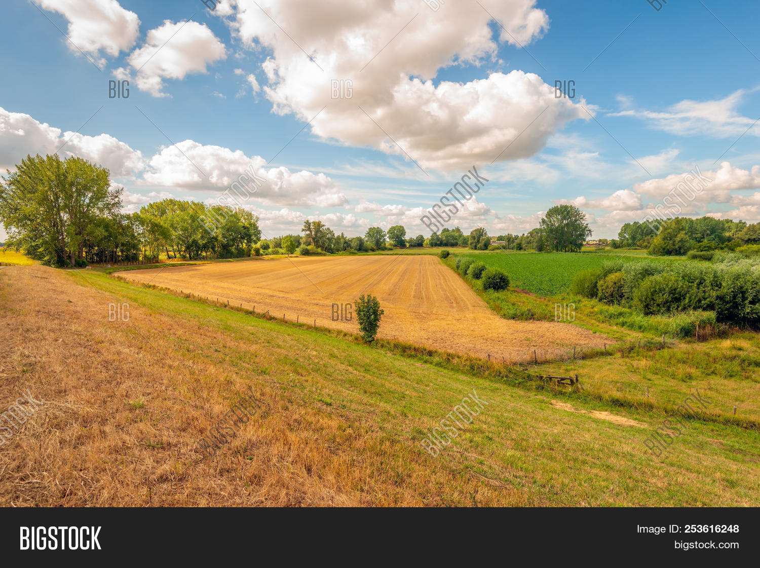 Picturesque Composition Of Different Colored Fields Seen