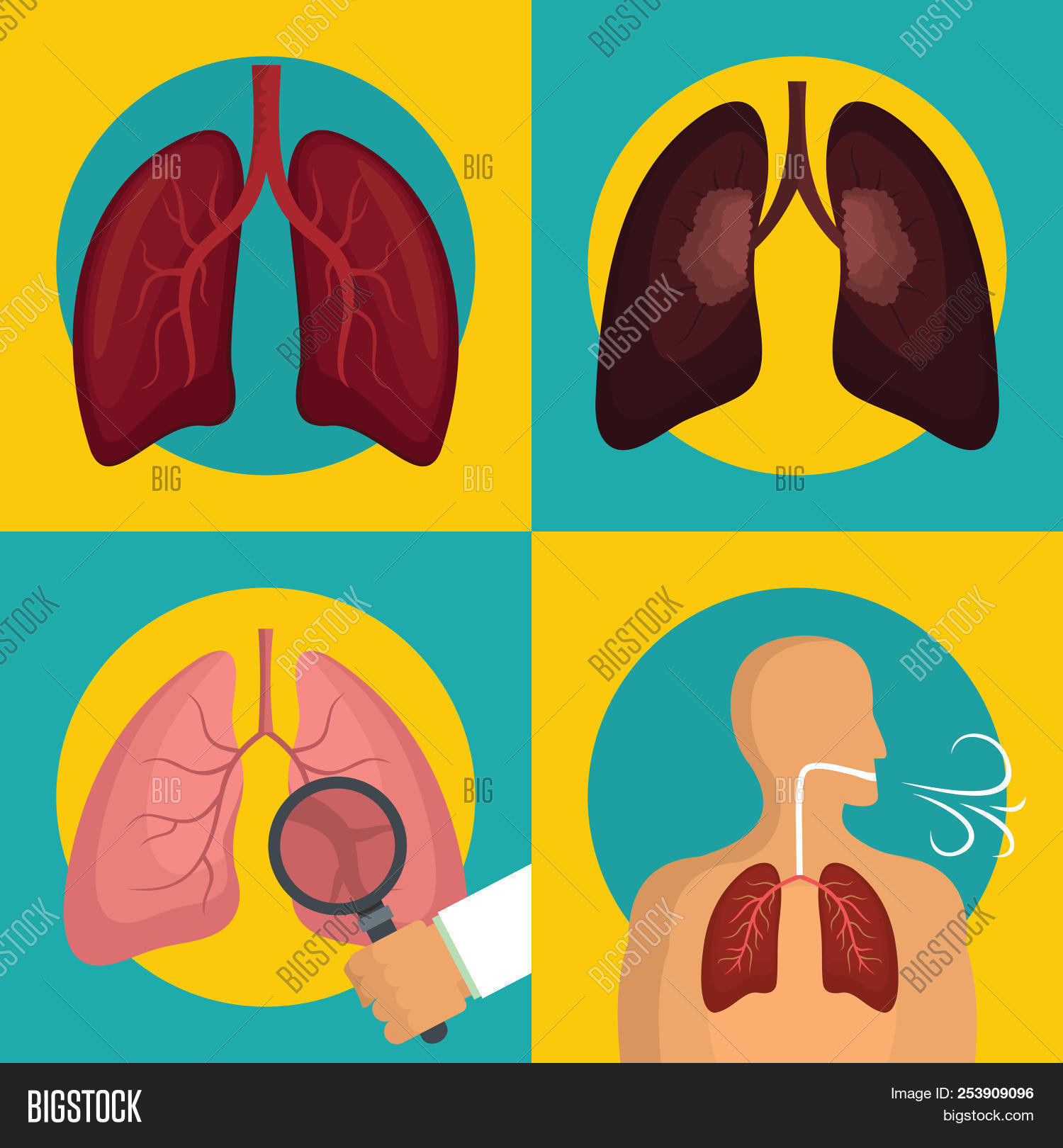 air,alveolar,anatomy,asthma,banner,biology,body,breath,breathe,breathing,bronchi,cancer,care,chest,cigarette,color,colorful,diagnosis,disease,exhalation,flat,health,healthcare,healthy,human,icon,illness,illustration,internal,lung,medical,medicine,organ,oxygen,pneumonia,pulmonary,respiration,respiratory,science,screening,set,sign,smoke,symbol,system,tobacco,trachea