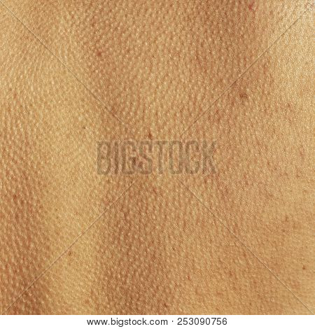 abstract background skin of an human spine stock photo