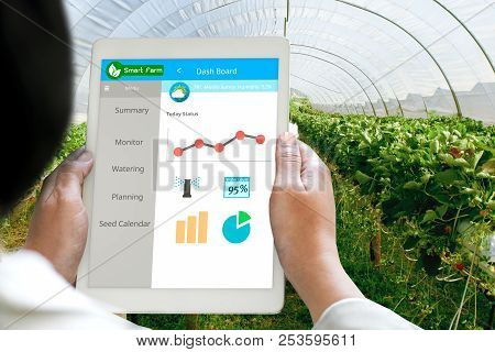 Hand holding Tablet Monitoring Smart farming system in Greenhouse, Agriculture technology revolution,  AI automatic, Conceptual stock photo