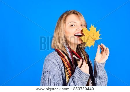 Autumn. Autumn leaves. Autumn sales. Sensual woman with maple leaves. Autumn mood. Woman with autumn leaf. Smiling woman holds leaf in hand. Isolated. Yellow maple leaf. stock photo