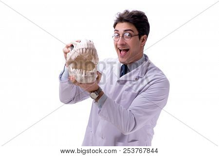 Funny crazy professor paleontologyst studying animal skeletons i stock photo