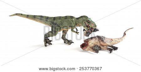 tyrannosaurus biting a dinosaur body on white background stock photo