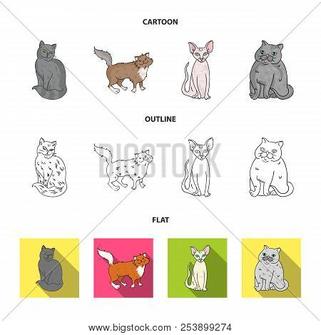 Sphinx, nibelung, norwegian forest cat and other species. Cat breeds set collection icons in cartoon, outline, flat style vector symbol stock illustration web. stock photo