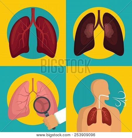 Lung organ human breathing icons set. Flat illustration of 4 lung organ human breathing icons for web stock photo