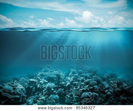 Sea or sea submerged profound nature foundation