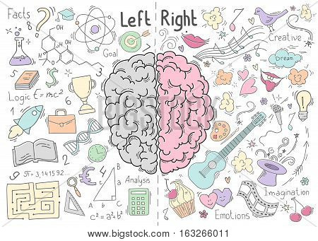 Creative concept of the human brain. Left and right side. Brain left and right side hemispheres concept. Vector illustration stock photo