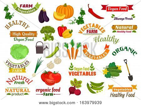Vegetables vegetarian emblems, ribbons set. Fresh natural farm organic vegetables and greens pumpkin, carrot, pepper, dill, peas, radish, beet, cabbage, eggplant, cucumber. Isolated icons for grocery store, vegan product label sticker stock photo