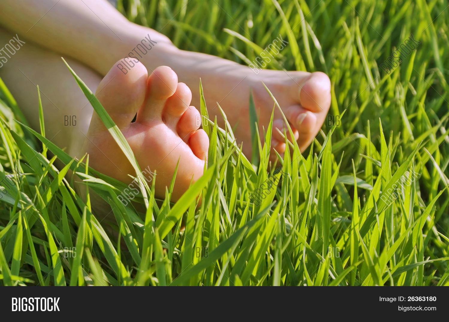 back,bare,bare feet,camping,comfort,comfortable,foot,free,freedom,grass,green,nature,outdoors,recreation,relaxation,relaxing,rest,sleep,summer,sunny,toes