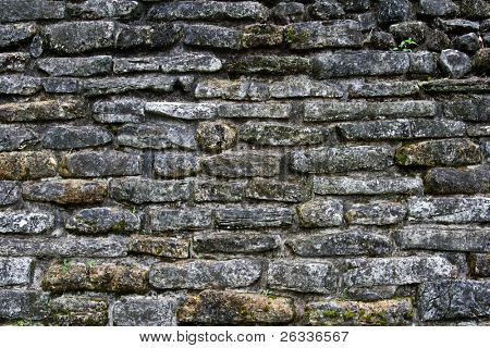 Ancient stone wall of Mayan building in Palenke, Mexico, stock photo