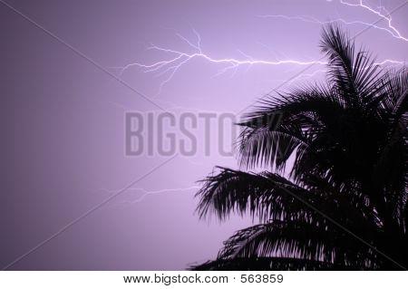 thunder storm fort lauderdale, florida stock photo