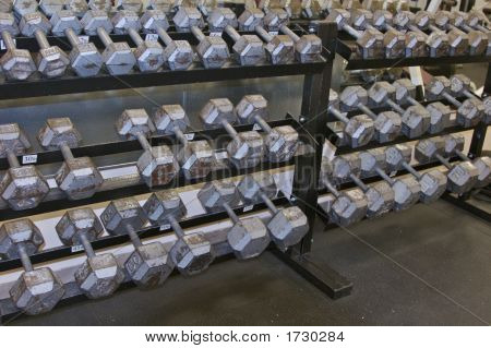 Image of a numerious free weights various sizes stock photo