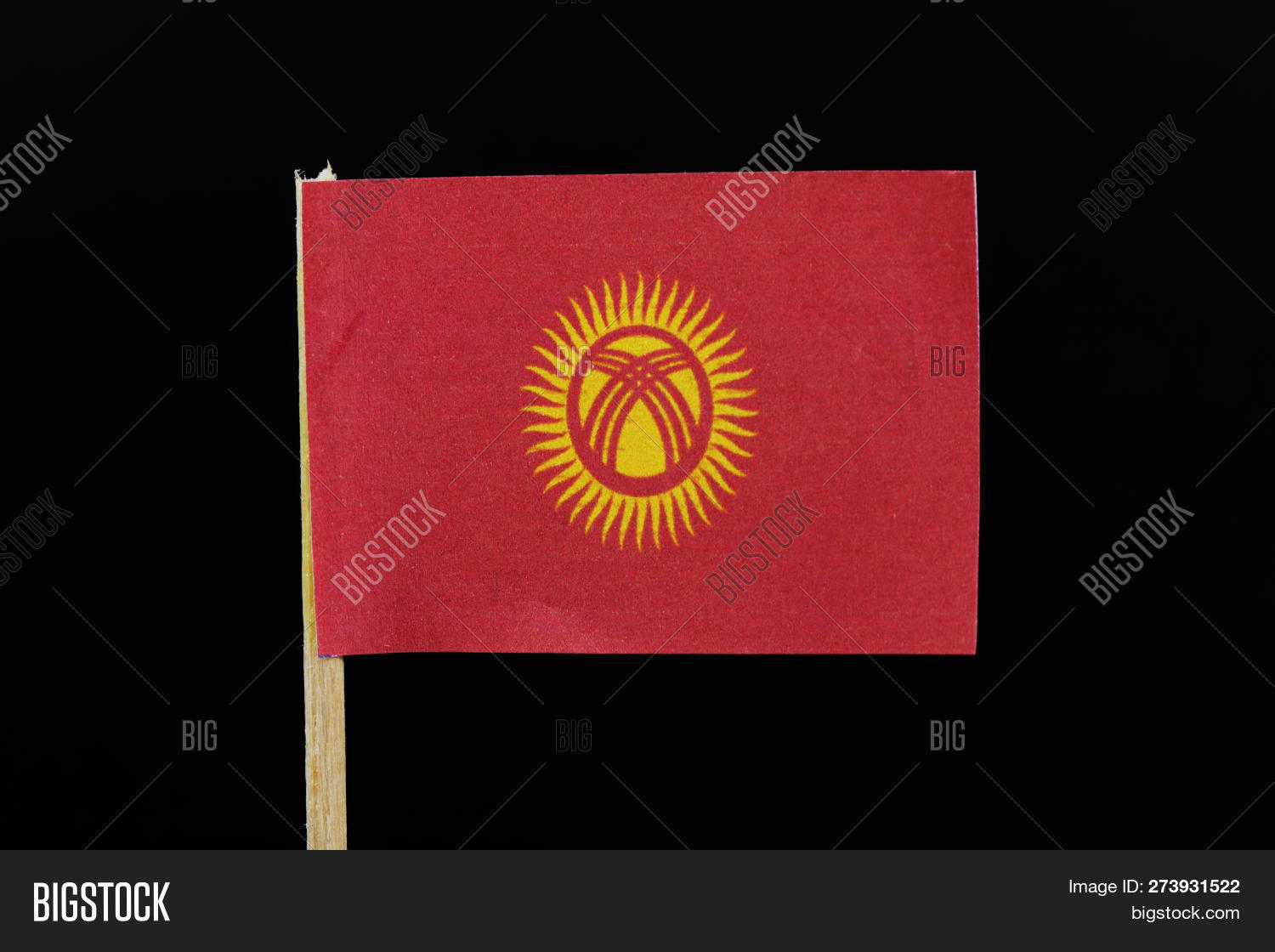 A official flag of Kyrgyzstan on toothpick on black background. A red field charged with a yellow sun with forty uniformly spaced rays; the sun is crossed by two sets of three lines.