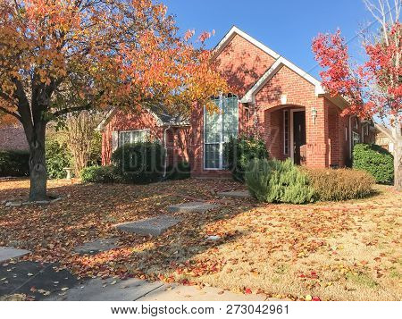 Typical single-family house near sidewalk in suburban Dallas, Texas, USA. Colorful fall foliage with thick carpet of Bradford Pear (Callery pear) leaves on tree and ground stock photo