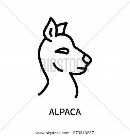 Alpaca icon isolated on white background. Alpaca icon simple sign. Alpaca icon trendy and modern symbol for graphic and web design. Alpaca icon flat vector illustration for logo, web, app, UI. stock photo