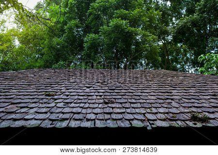 Roofing Contractors Installing House Roof Board for Asphalt Shingles. Roofing Contractor. Roofing Construction. Roof Repai stock photo