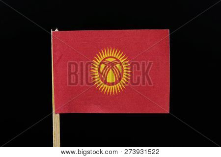 A official flag of Kyrgyzstan on toothpick on black background. A red field charged with a yellow sun with forty uniformly spaced rays; the sun is crossed by two sets of three lines. stock photo