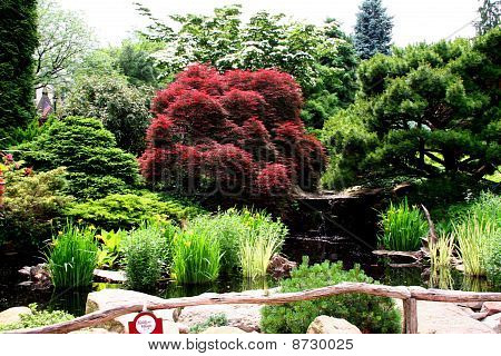 a beautiful public garden filled with mature trees and excotic plants stock photo