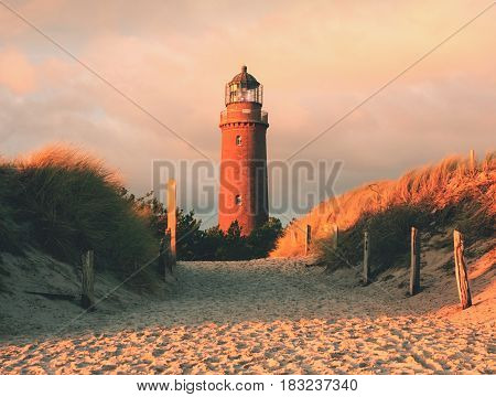 Historical lighthouse. Shinning lighthouse dunes and pine tree. Tower illuminated with strong warning light dark sky in background. Lighthouse tower built from red bricks. stock photo