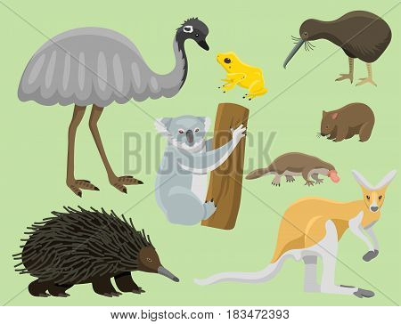 Australia wild animals cartoon popular nature characters flat style and australian mammal aussie native forest collection vector illustration. Natural little young portrait. stock photo