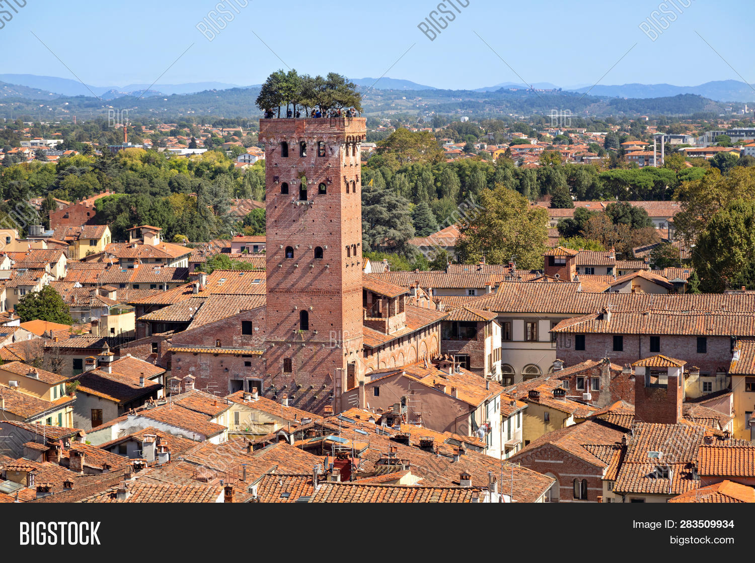 Guinigi,Torre,aerial,architecture,brick,city,cityscape,day,europe,holm-oak,italy,landmark,lucca,medieval,oak,summer,sunny,toscana,tower,trees,tuscany,view