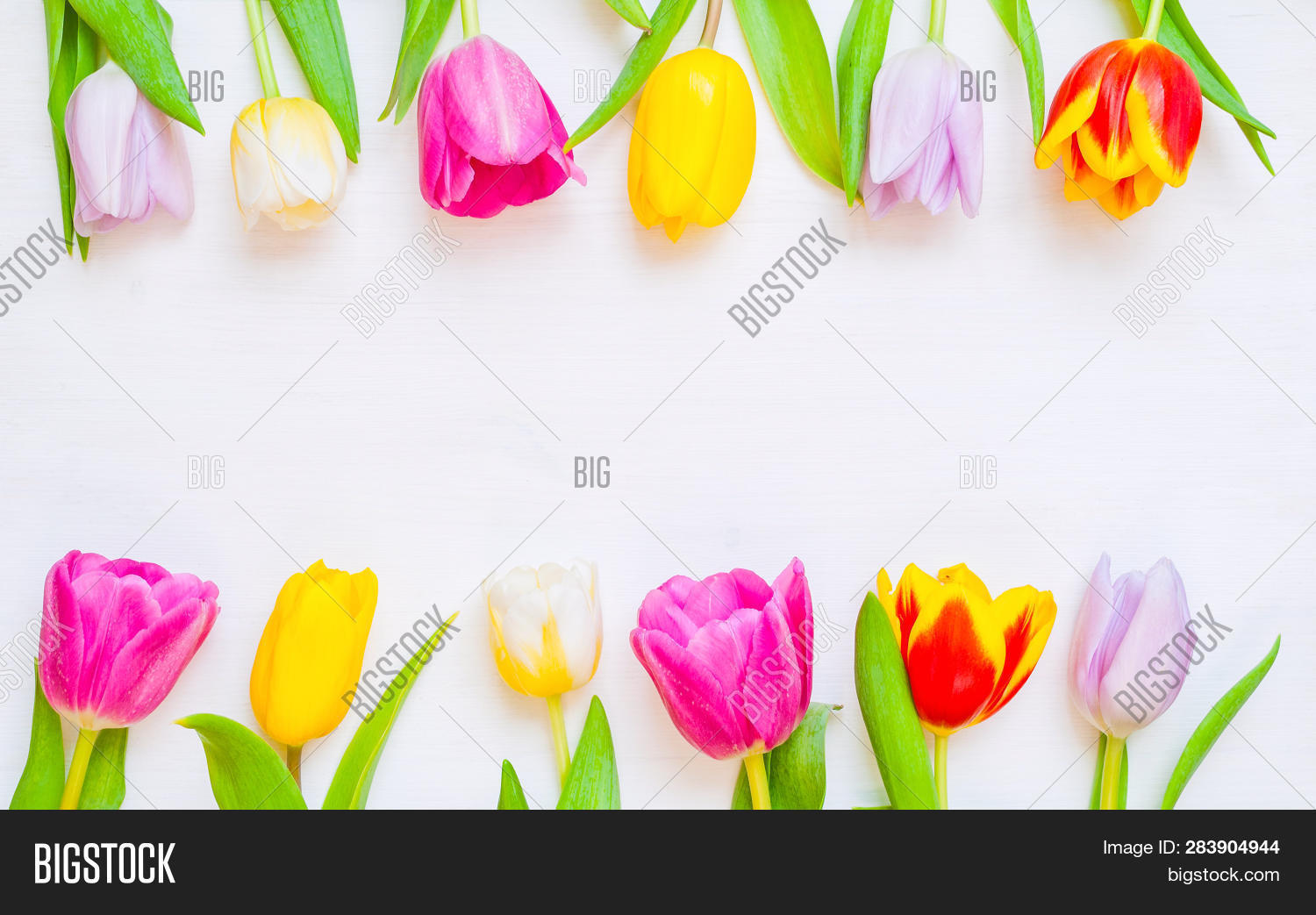 aroma,background,beautiful,birthday,bouquet,celebrate,day,event,floral,focus,fresh,gift,leaf,love,mother,nature,petal,pink,rustic,selective,spring,spring-blossom,spring-border,spring-composition,spring-design,spring-flower,spring-holiday,spring-postcard,spring-tulip,summer,valentine,wallpaper,wedding,wood