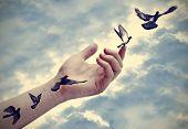 Bird tattoos spring up, flexibility idea
