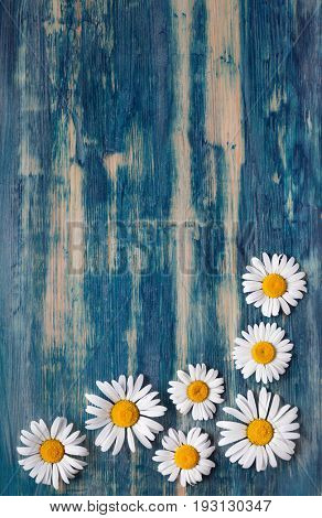 Background of daisies on an old wood board.-Lg Fridge Magnet Skin (size 36x65)