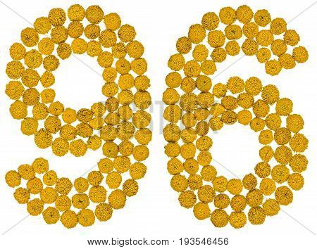 Arabic numeral 96 ninety six from yellow flowers of tansy isolated on white background The tansy - a plant of the daisy family with yellow flat-topped buttonlike flower heads and aromatic leaves formerly used in cooking and medicine. stock photo