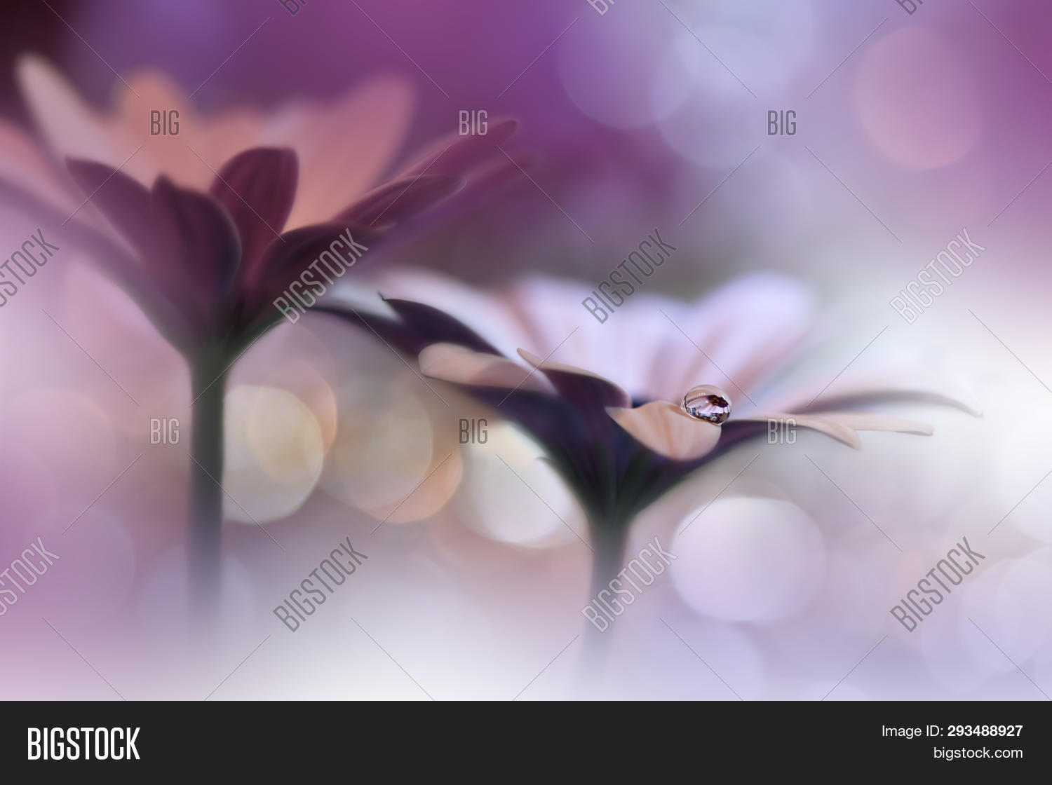 abstract,acrylic,art,artistic,artwork,background,bloom,blossom,blur,brush,canvas,closeup,color,colorful,decoration,decorative,design,drawing,drop,flora,floral,flower,gerbera,green,greeting,handmade,life,macro,modern,nature,oil,orange,paint,paintbrush,painting,pastel,petal,photography,plant,spring,still,stroke,style,summer,texture,vibrant,wallpaper,white,yellow
