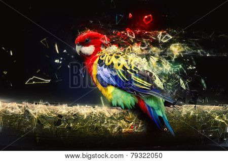 Parrot on the branch, abstract animal concept. Can be used for canvas print, decoration, banner, t-shirt graphic, advertising. stock photo