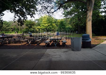 A picnic area with picnic tables and garbage cans under the shade of trees. stock photo