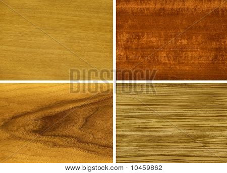 Wood, veneer of trees, from left to right and from top to down: anegri, makore, teak, zebrano. stock photo