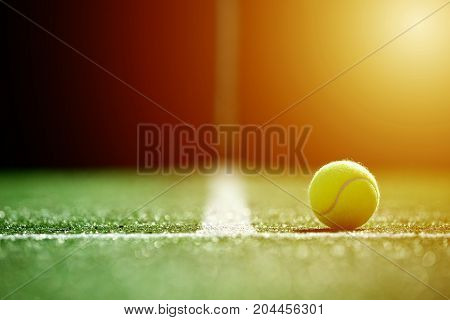 soft focus of tennis ball on tennis grass court with sunlight stock photo