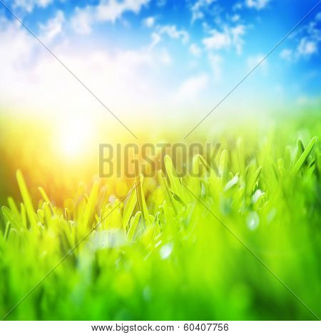 Beautiful spring landscape, fresh green grass, blue sky, bright yellow sun light, gorgeous warm weat