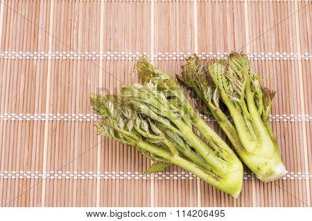 Aralia elata shoots(Japanese angelica tree) on the bamboo mat stock photo