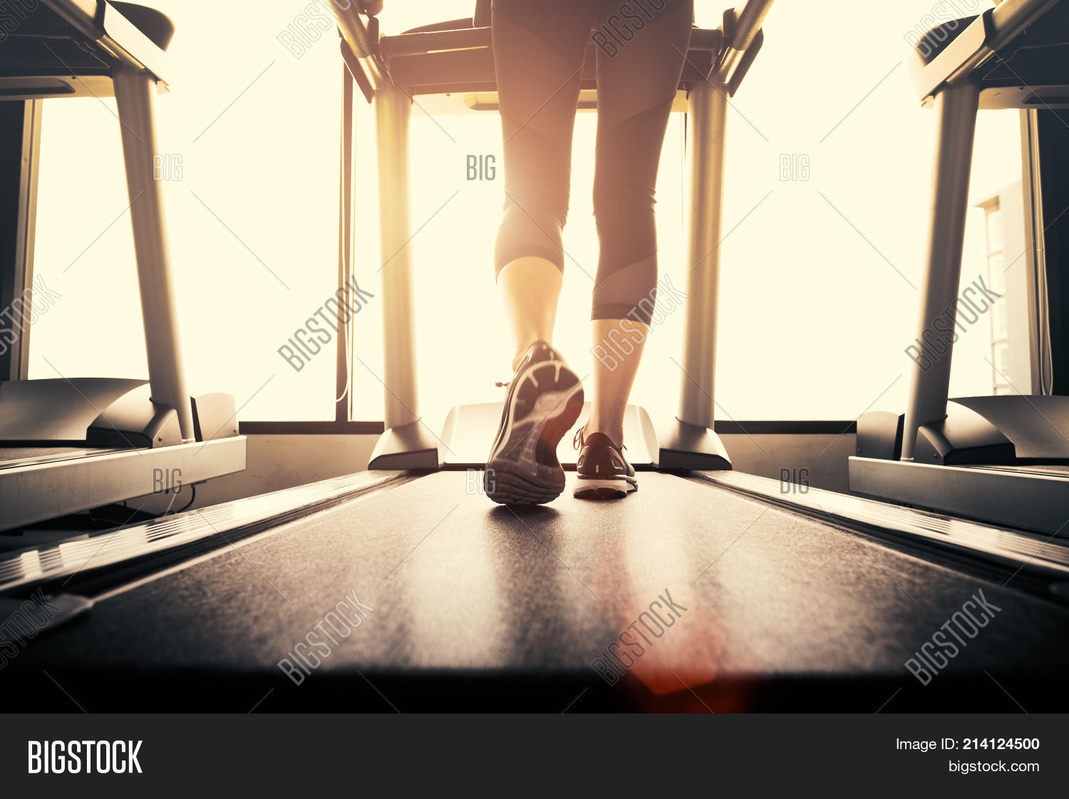 active,activity,adult,athlete,athletic,attractive,back,background,beautiful,body,cardio,care,equipment,exercise,female,fit,fitness,foot,girl,gym,happy,health,healthy,legs,lifestyle,machine,motion,muscular,orange,people,person,portrait,rays,runner,running,sneakers,sport,sportswear,step,strength,strong,sun,tone,train,treadmill,view,warm,wellness,woman,workout,young