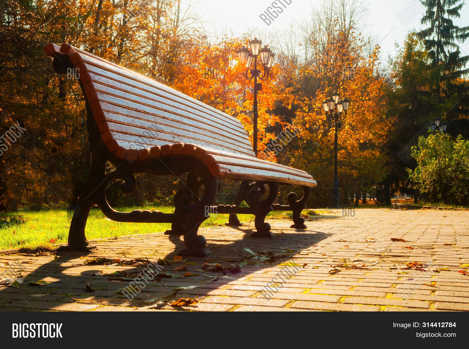 August,November,October-fall,September-fall,alley,autumn,background,fall-bench,city,cloudy,day,deserted,early-fall,fall,foliage,forest,golden,green,landscape,leaves,natural,nature,nice,nobody,orange,park,scene,season,seasonal,sun,sunlight,sunny,sunset,sunshine,trees,weather,fall-forest,fall-landscape,fall-nature,fall-scene,fall-trees,fall-background,fall-leaves,fall-park,fall-outdoors,fall-leaf,fall-alley,fall-sunset,yellow,yellowed