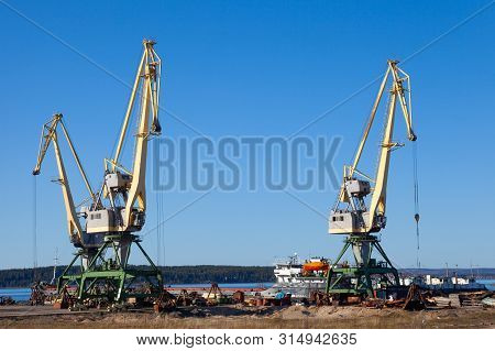 Cranes in the port of machinery and forklifts to load and unload pallets on a sunny summer day stock photo