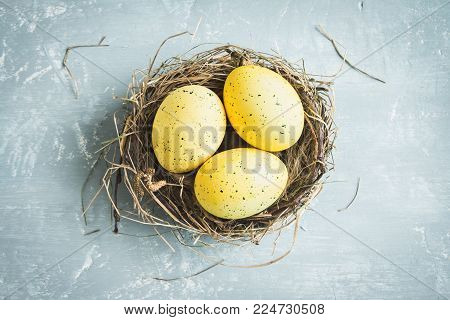 Easter Eggs in bird Nest on rustic metal background. Decorated easter eggs with feathers in nest on brown table with copy space. Spring, Easter or healthy organic food concept. stock photo