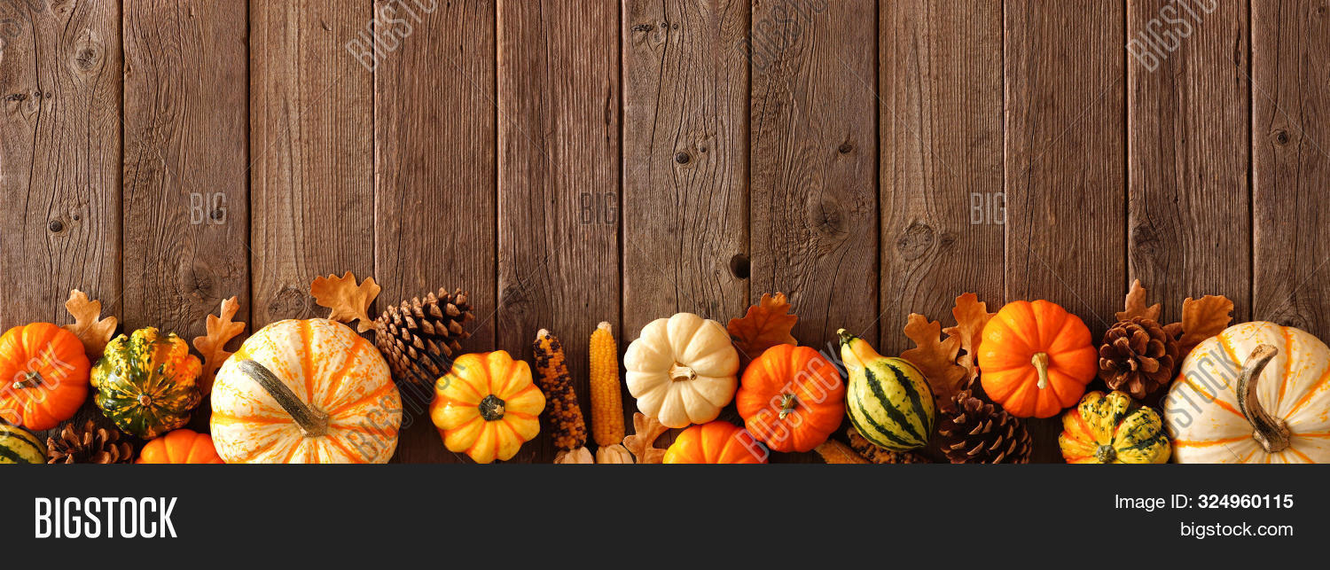 above,agriculture,autumn,background,banner,border,brown,cones,copy,corn,culture,dark,decor,decoration,fall,food,frame,gourds,halloween,harvest,holiday,home,leaves,long,many,natural,nature,november,objects,october,old,orange,overhead,pine,pumpkins,rustic,season,seasonal,space,squash,table,thanksgiving,top,traditional,vegetable,view,vintage,wood,wooden,yellow