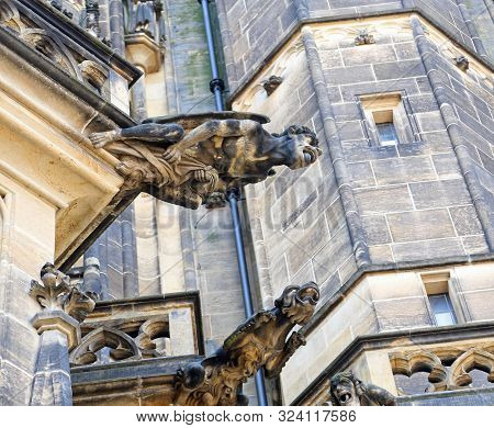 Detail of Gargoyle on the Saint Vitus Cathedral in Prague in Czech Republic in Europe stock photo