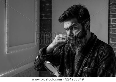 Bearded man getting haircut by hairdresser and sitting in chair at barbershop. Bearded man or hipster. Fine Cuts. Advertising and barber shop concept. Portrait bearded man stock photo