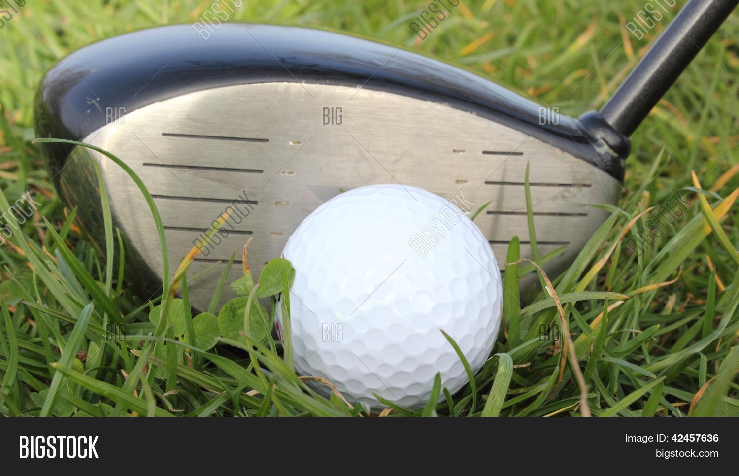 achieve,achievement,action,active,activity,aim,aiming,background,balance,ball,beautiful,begin,birdie,bright,close,club,compete,competition,competitive,concept,conceptual,country,course,cut,day,design,detail,dimples,divot,drive,driven,driver,eagle,exercise,expense,expensive,fairway,field,flag,fore,form,four,friendly,frustrate,frustrating,frustration,fun,game,golf,golfball,golfcourse,golfer,golfing,grass,green,greenery,grooves,handicap,hard,hit,hobby,hole,holiday,invitation,invitational,lawn,leisure,life,lifestyle,links,long,natural,nature,outdoors,par,peg,pitch,pitching,play,player,playing,practice,ready,recreation,relax,relaxation,relaxed,resort,retire,retirement,rough,round,scenery,scenic,score,scorecard,senior,shadow,skill,speed,sports,start,success,successful,summer,sweet,swing,tee,vacation,walk,white,wood