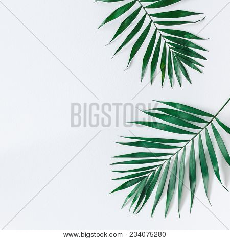Leaf Pattern. Green Tropical Leaves On Gray Background. Summer Concept. Flat Lay, Top View, Copy Spa