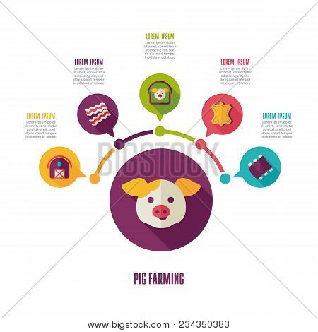 Pig farming icon and agriculture infographics. Farm sign. Graph symbol for your web site design, logo, app, UI. Vector illustration stock photo