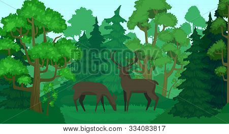 Cartoon deer in forest landscape. Deers in woods, forest field and green trees. Wildlife animals, doe and deer wood scenery or standing elks mammals forests scene vector illustration stock photo