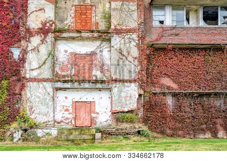facade of old abandoned brick building overgrown by vine, fall scenery - urban decay concept stock photo